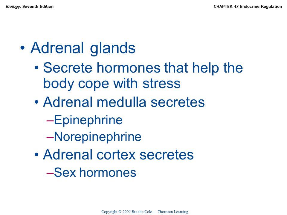 Copyright © 2005 Brooks/Cole — Thomson Learning Biology, Seventh EditionCHAPTER 47 Endocrine Regulation Adrenal glands Secrete hormones that help the