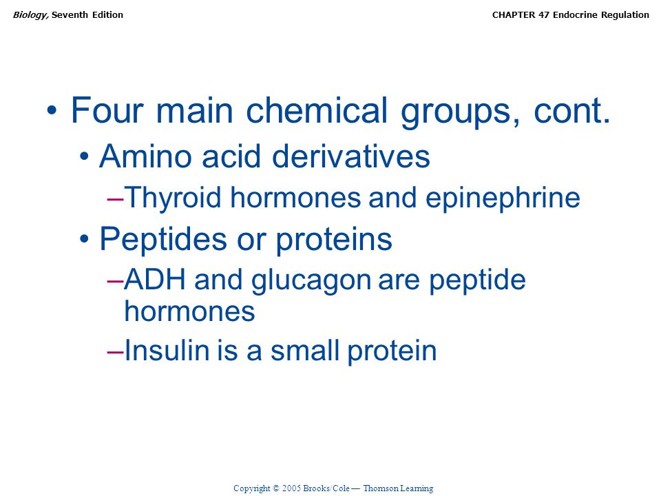 Copyright © 2005 Brooks/Cole — Thomson Learning Biology, Seventh EditionCHAPTER 47 Endocrine Regulation Four main chemical groups, cont. Amino acid de