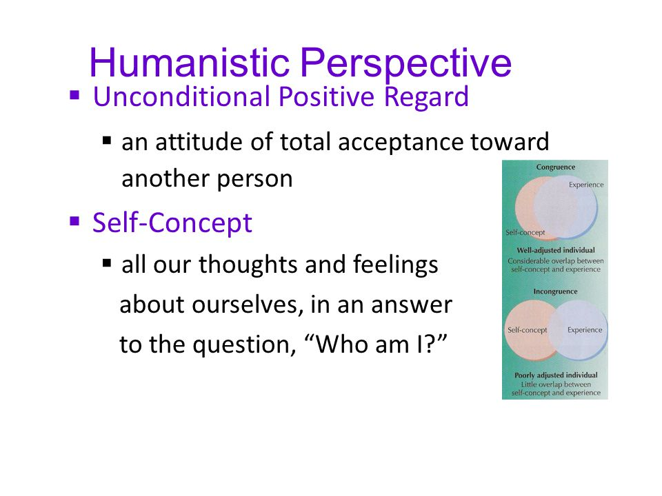 Humanistic Perspective  Unconditional Positive Regard  an attitude of total acceptance toward another person  Self-Concept  all our thoughts and f