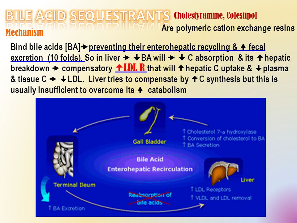 Are polymeric cation exchange resins Mechanism Bind bile acids [BA]  preventing their enterohepatic recycling & fecal excretion (10 folds).