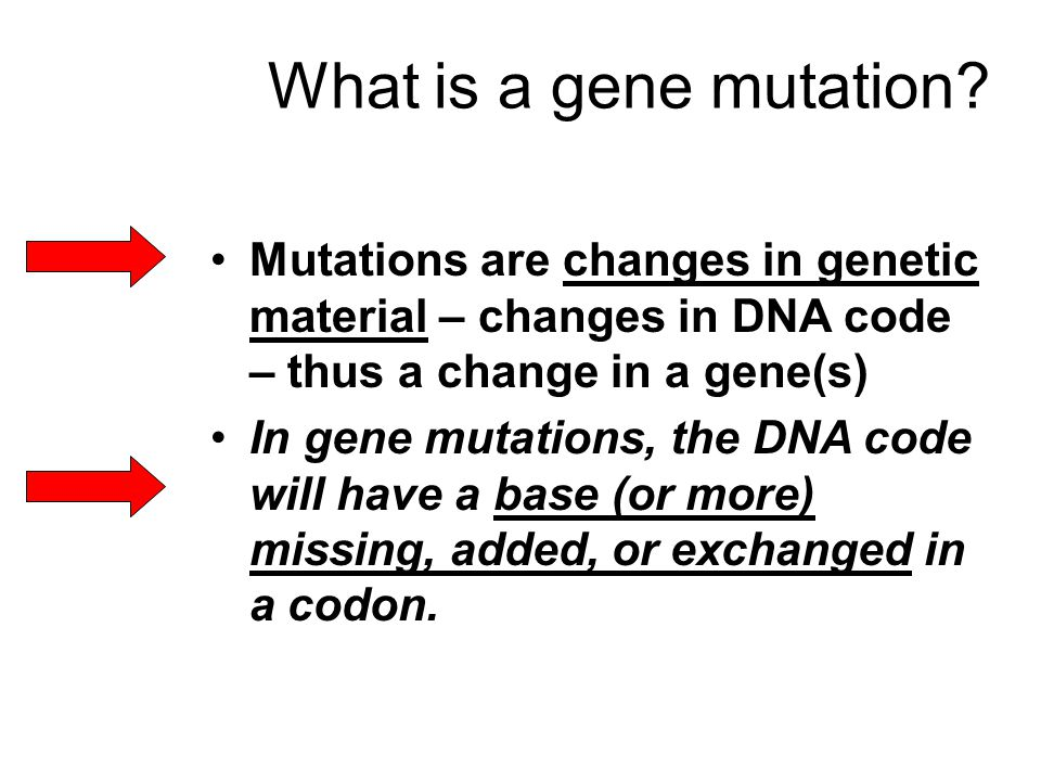 What is a gene mutation.