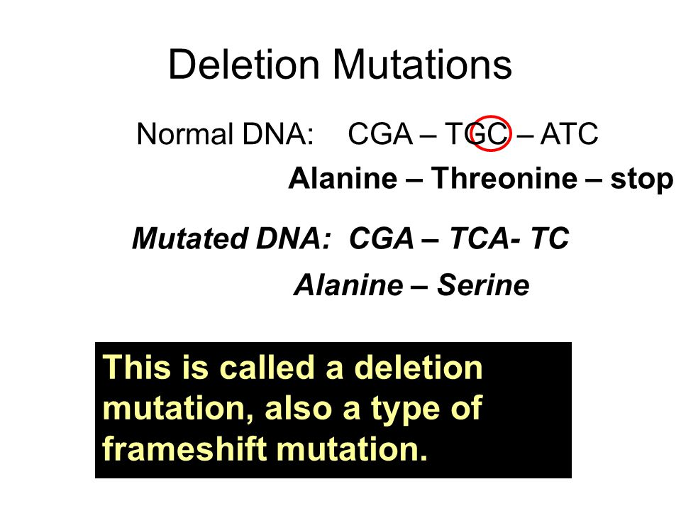 Mutated DNA: CGA – TCA- TC Alanine – Threonine – stop Alanine – Serine Deletion Mutations Normal DNA: CGA – TGC – ATC This is called a deletion mutation, also a type of frameshift mutation.