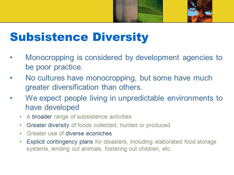 Subsistence Diversity Monocropping is considered by development agencies to be poor practice.