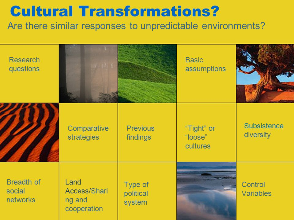 Cultural Transformations. Are there similar responses to unpredictable environments.