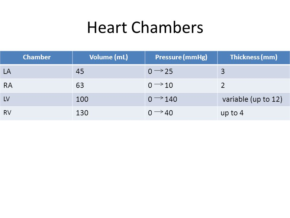 Heart Chambers Thickness (mm)Pressure (mmHg)Volume (mL)Chamber 30 2545LA 20 1063RA variable (up to 12)0 140100 LV up to 40 40130 RV