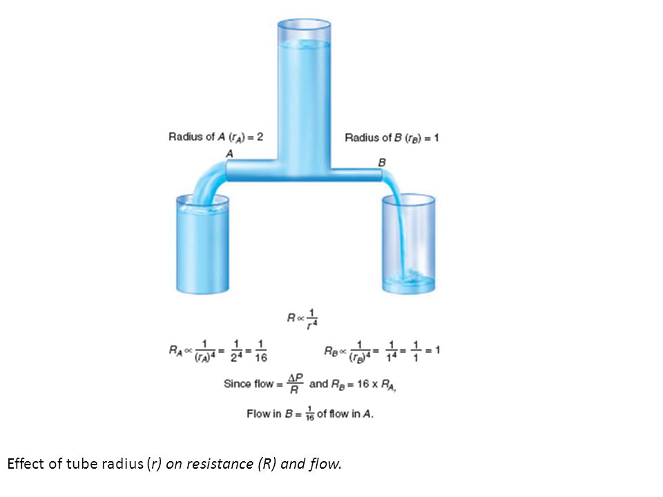Effect of tube radius (r) on resistance (R) and flow.