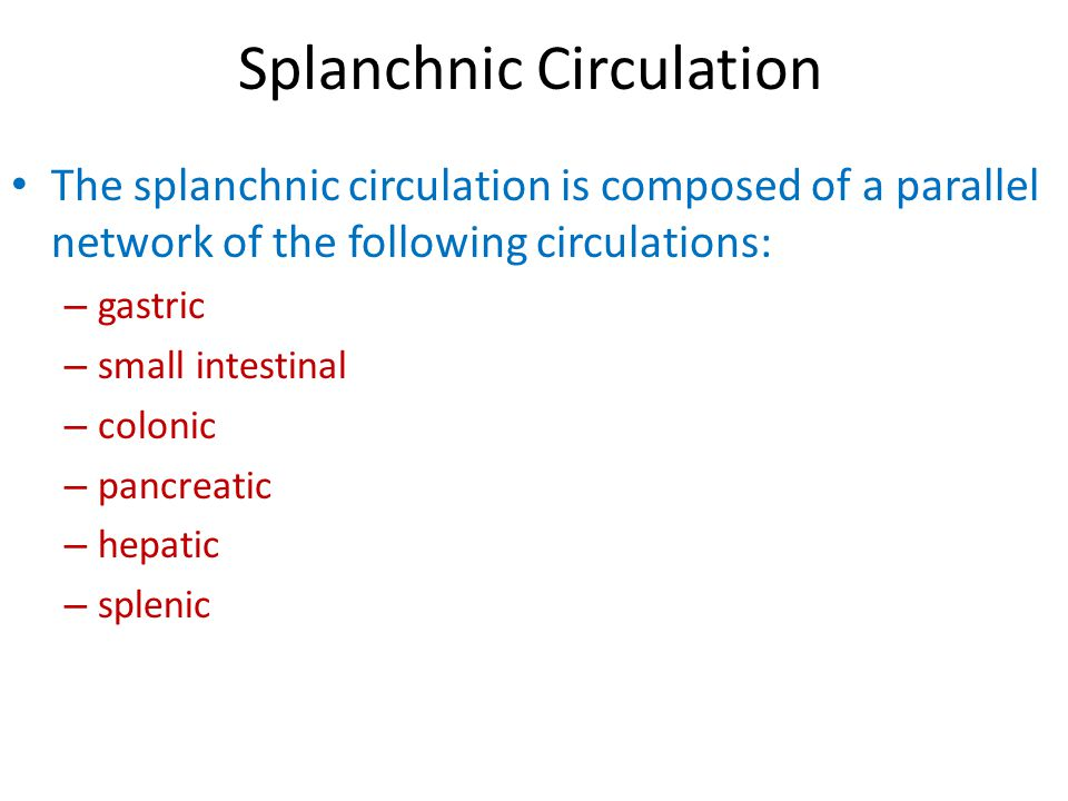 Simplified schematic of splanchnic vascular bed showing the parallel pathways of the circulation of the various gastrointestinal organs and their series arrangement with the portal circulation to the liver, and the common venous drainage of all these organs.