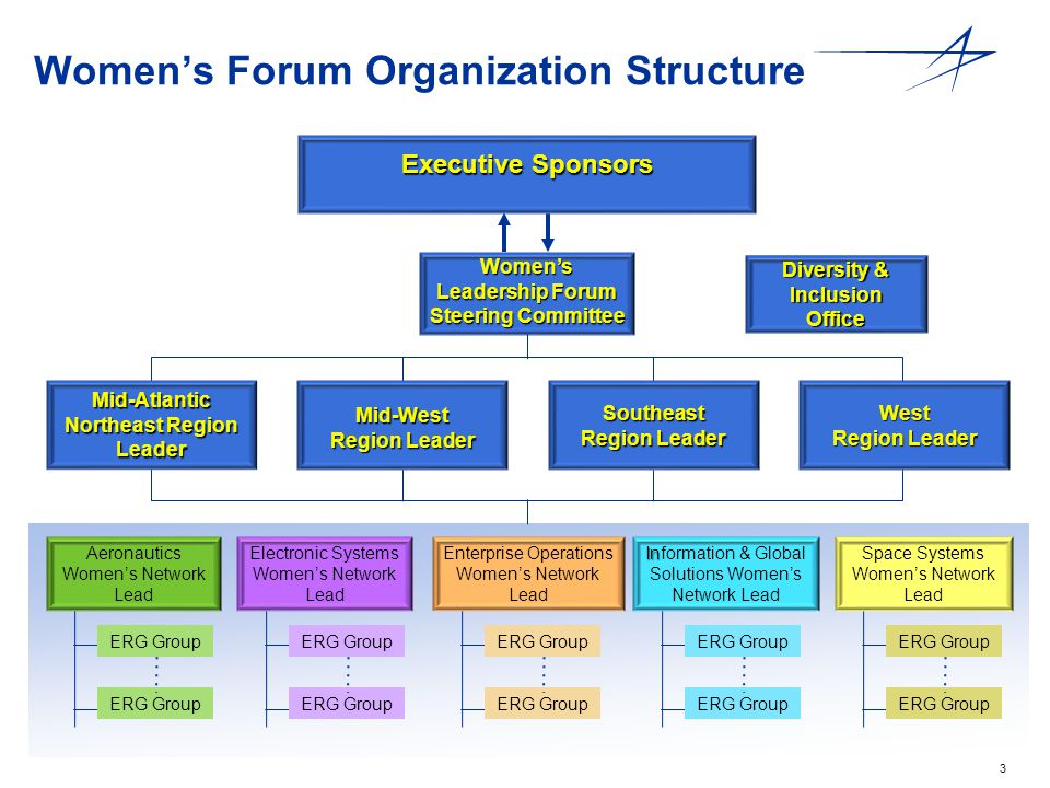 3 Women's Forum Organization Structure Executive Sponsors Women's Leadership Forum Steering Committee Diversity & Inclusion Office Mid-Atlantic Northe