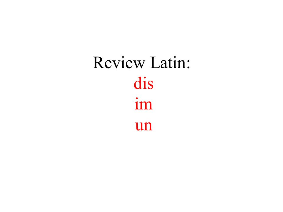 Review Latin: dis im un