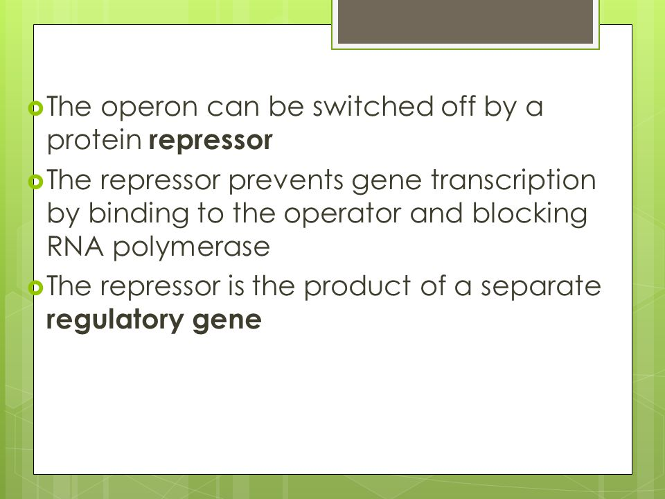  The operon can be switched off by a protein repressor  The repressor prevents gene transcription by binding to the operator and blocking RNA polyme