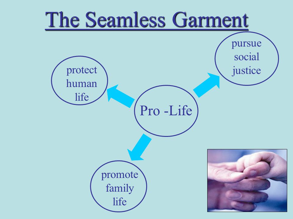 The Seamless Garment Pro -Life protect human life pursue social justice promote family life