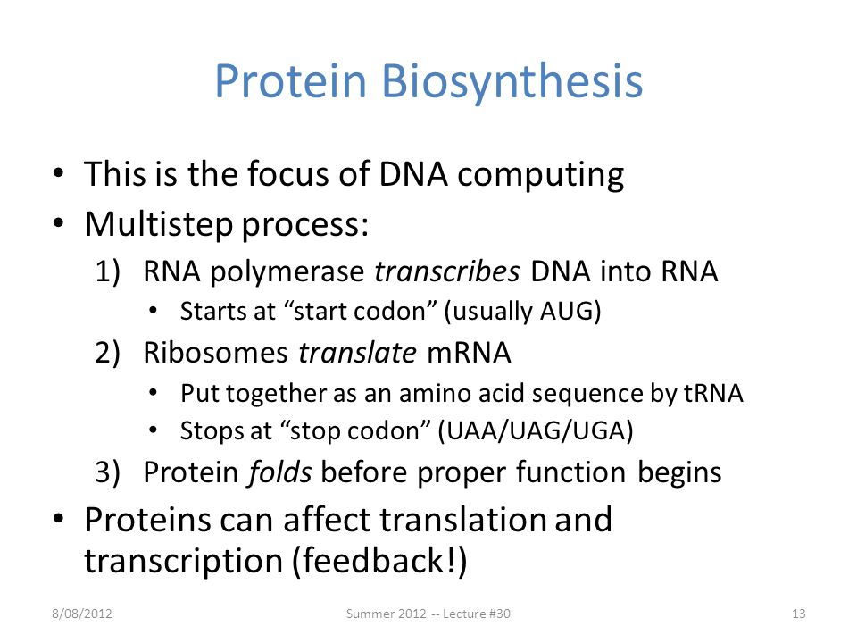 "Protein Biosynthesis This is the focus of DNA computing Multistep process: 1)RNA polymerase transcribes DNA into RNA Starts at ""start codon"" (usually"