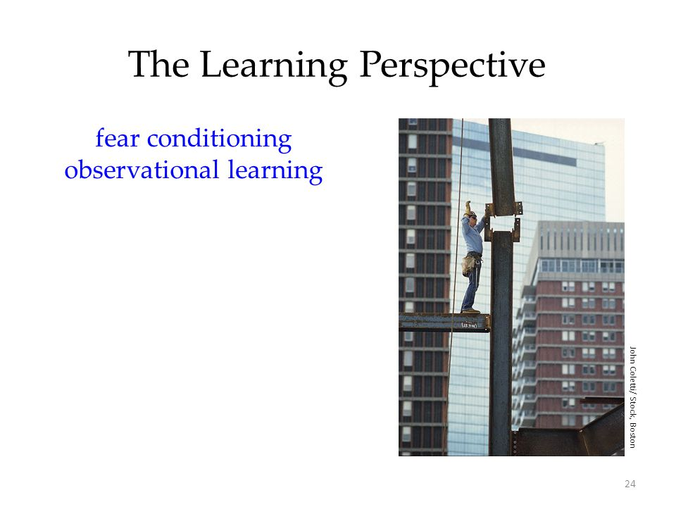 24 The Learning Perspective fear conditioning observational learning John Coletti/ Stock, Boston