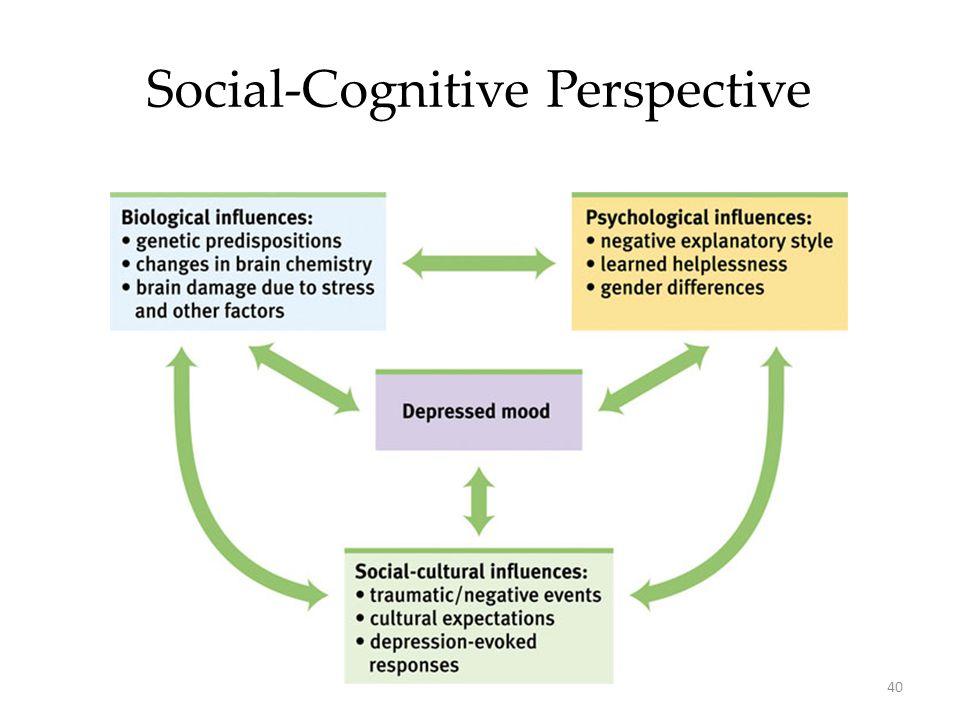 40 Social-Cognitive Perspective