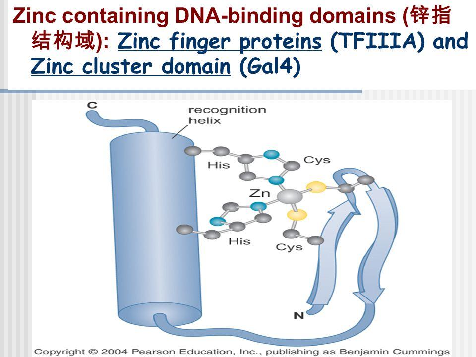 Zinc containing DNA-binding domains ( 锌指 结构域 ): Zinc finger proteins (TFIIIA) and Zinc cluster domain (Gal4)