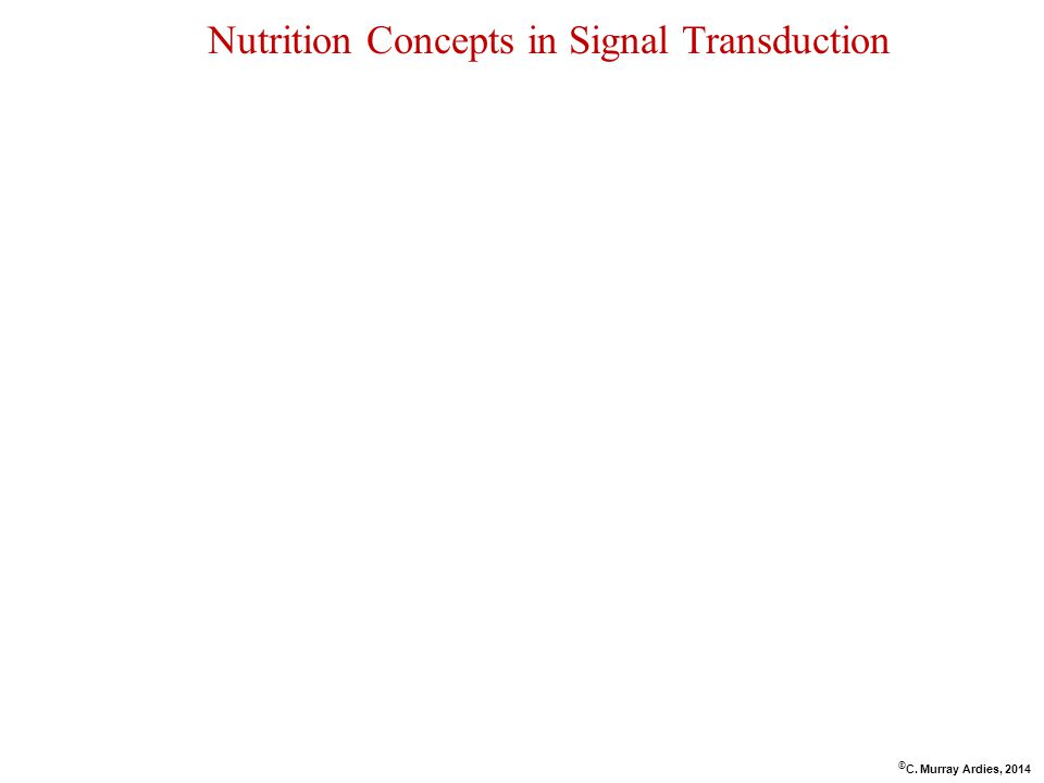 Nutrition Concepts in Signal Transduction © C. Murray Ardies, 2014