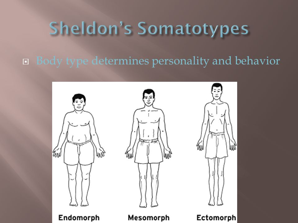  Body type determines personality and behavior