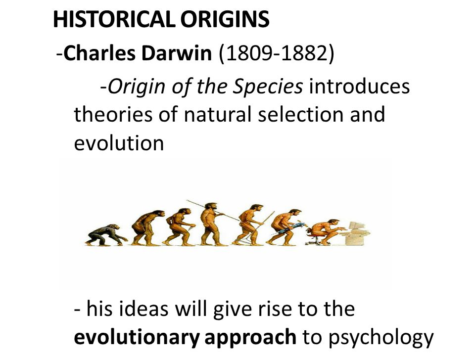 William James Heavily influenced by Darwin Considers evolved functions of our thoughts and feelings Father of functionalism: focuses on how mental and behavioral processes function in the organism