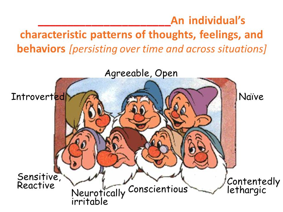 ______________________An individual's characteristic patterns of thoughts, feelings, and behaviors [persisting over time and across situations] Sensit