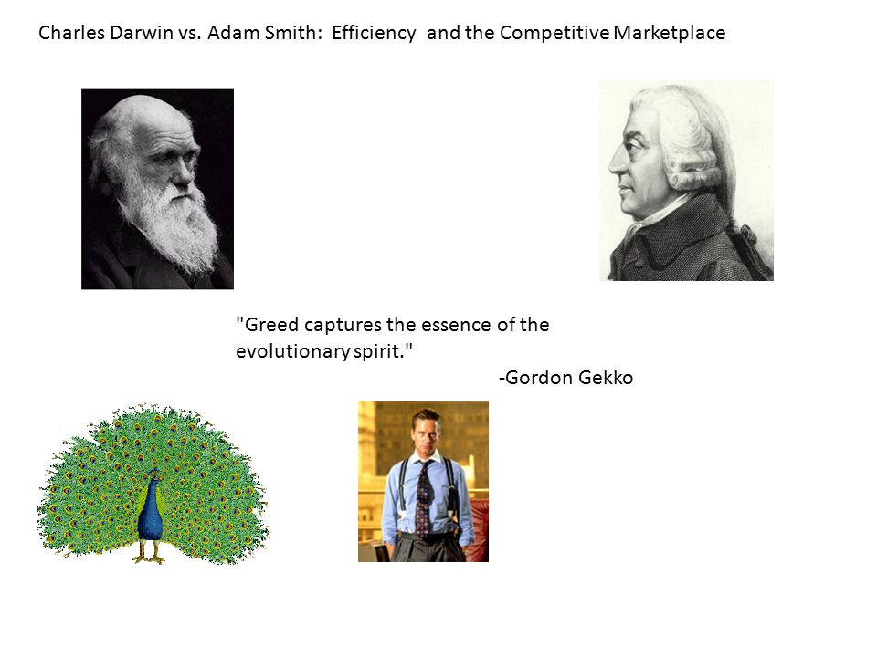 Charles Darwin vs. Adam Smith: Efficiency and the Competitive Marketplace