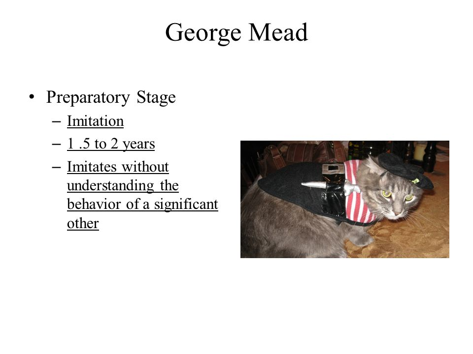 George Mead Preparatory Stage – Imitation – 1.5 to 2 years – Imitates without understanding the behavior of a significant other