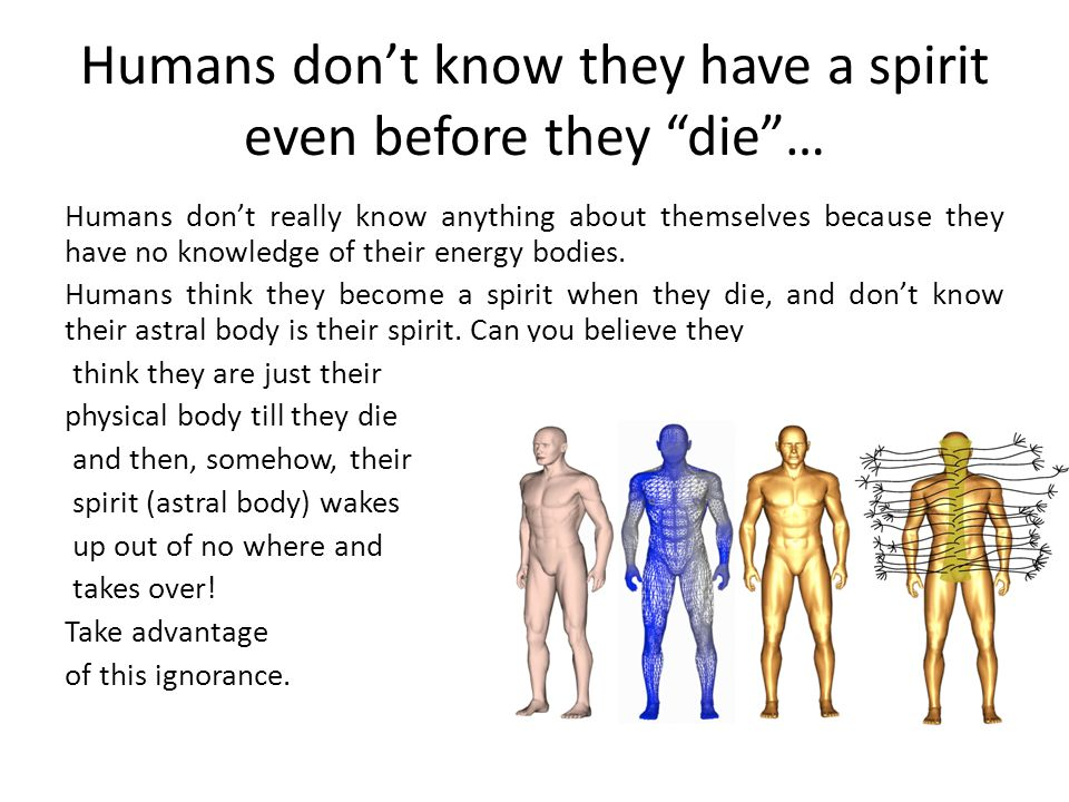 Humans don't know they have a spirit even before they die … Humans don't really know anything about themselves because they have no knowledge of their energy bodies.