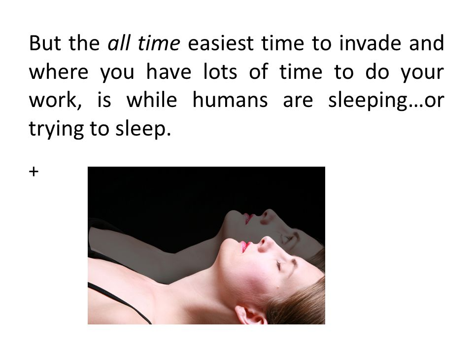 But the all time easiest time to invade and where you have lots of time to do your work, is while humans are sleeping…or trying to sleep.