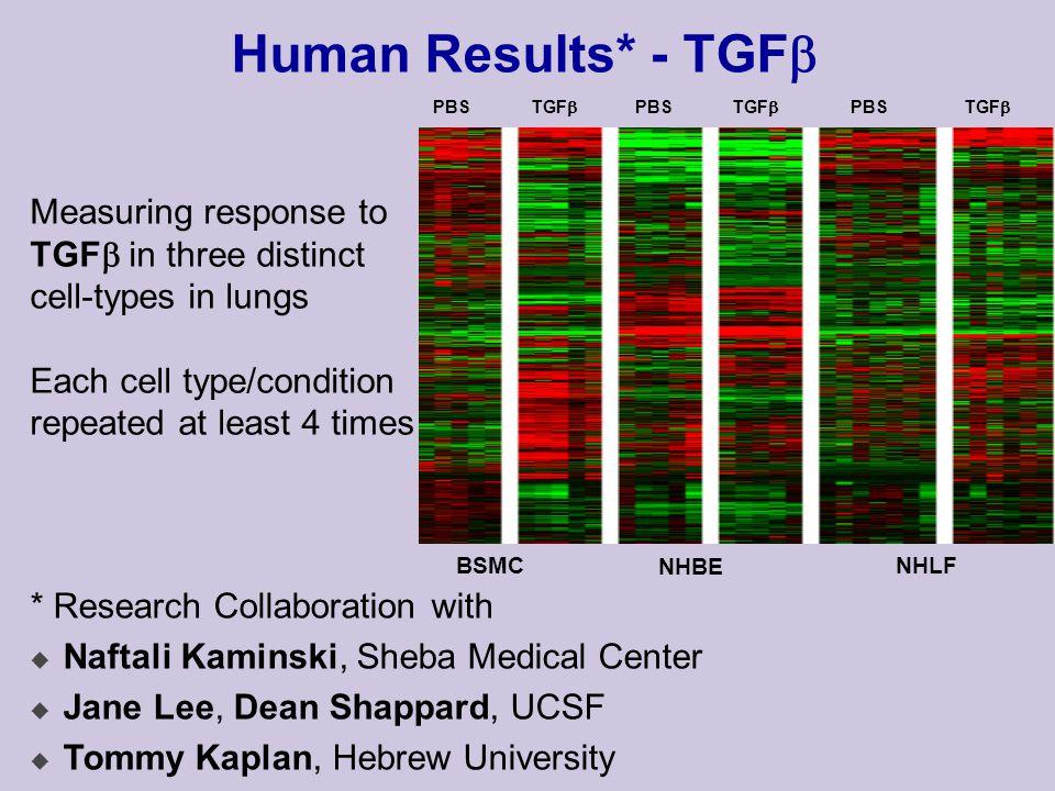Human Results (2) BSMC-down 12:6 1000 ups Discrete Motif Search: (Random Projections) Learn PSSM: Motif suggests LyF-1 binding site: TTTGGGAGR