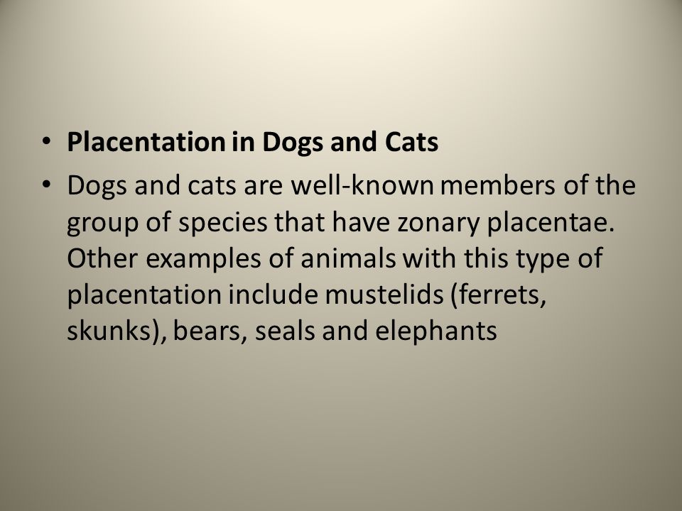 Placentation in Dogs and Cats Dogs and cats are well-known members of the group of species that have zonary placentae. Other examples of animals with