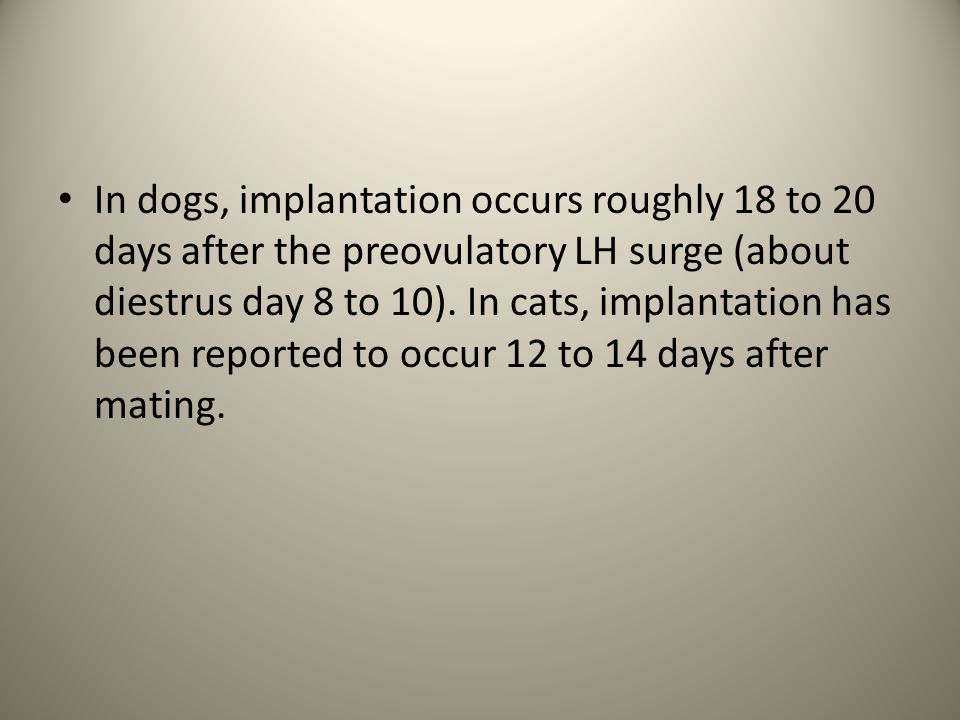 In dogs, implantation occurs roughly 18 to 20 days after the preovulatory LH surge (about diestrus day 8 to 10). In cats, implantation has been report