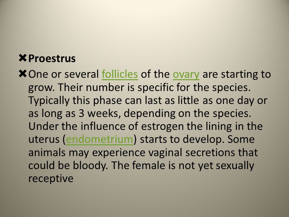  Proestrus  One or several follicles of the ovary are starting to grow. Their number is specific for the species. Typically this phase can last as l