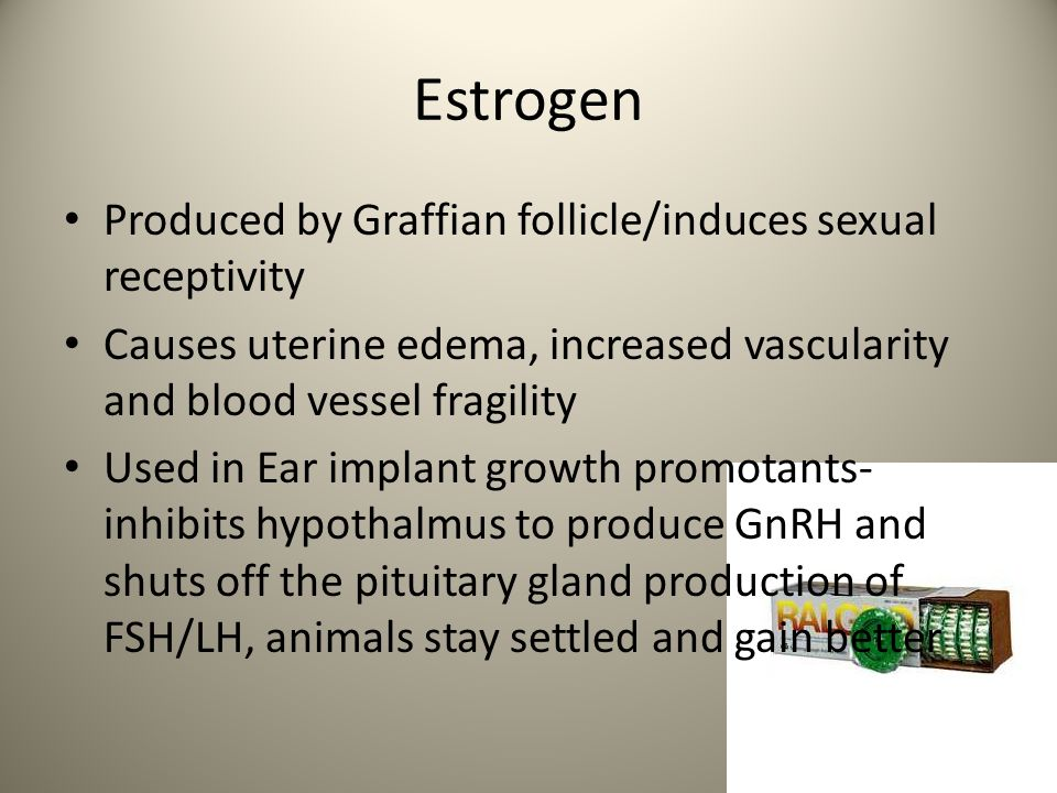 Estrogen Produced by Graffian follicle/induces sexual receptivity Causes uterine edema, increased vascularity and blood vessel fragility Used in Ear i