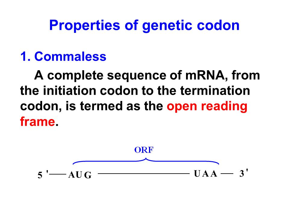 Properties of genetic codon 1. Commaless A complete sequence of mRNA, from the initiation codon to the termination codon, is termed as the open readin