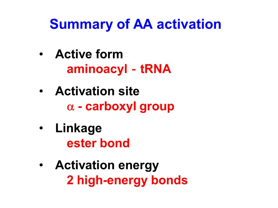 Active form aminoacyl - tRNA Activation site  - carboxyl group Linkage ester bond Activation energy 2 high-energy bonds Summary of AA activation
