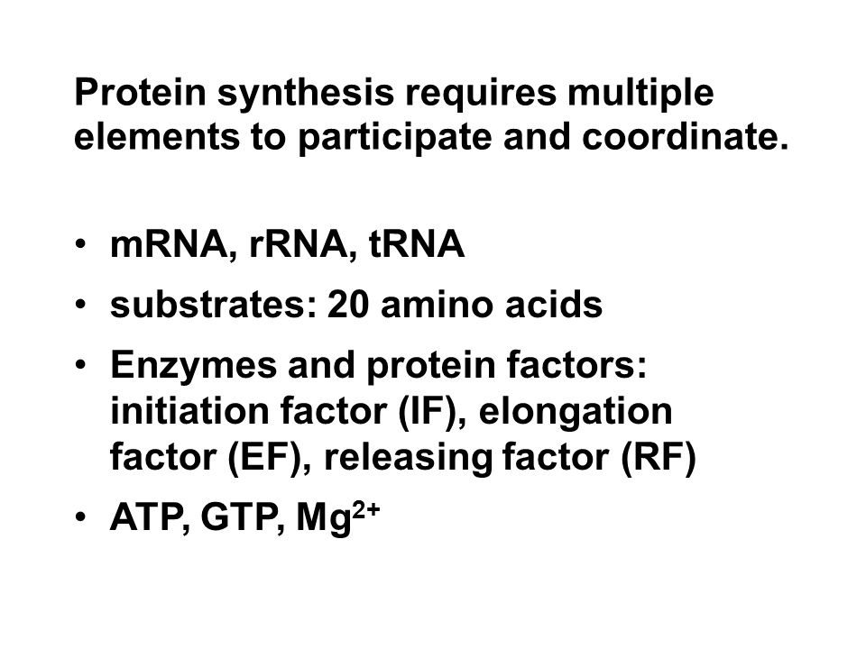 Protein synthesis requires multiple elements to participate and coordinate.