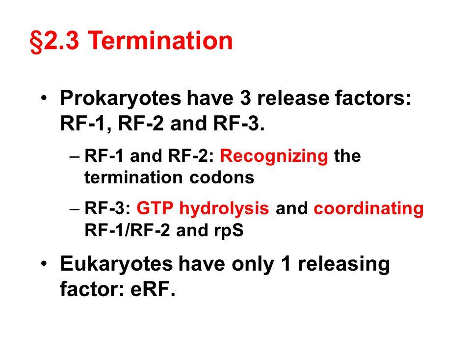 § 2.3 Termination Prokaryotes have 3 release factors: RF-1, RF-2 and RF-3. –RF-1 and RF-2: Recognizing the termination codons –RF-3: GTP hydrolysis an