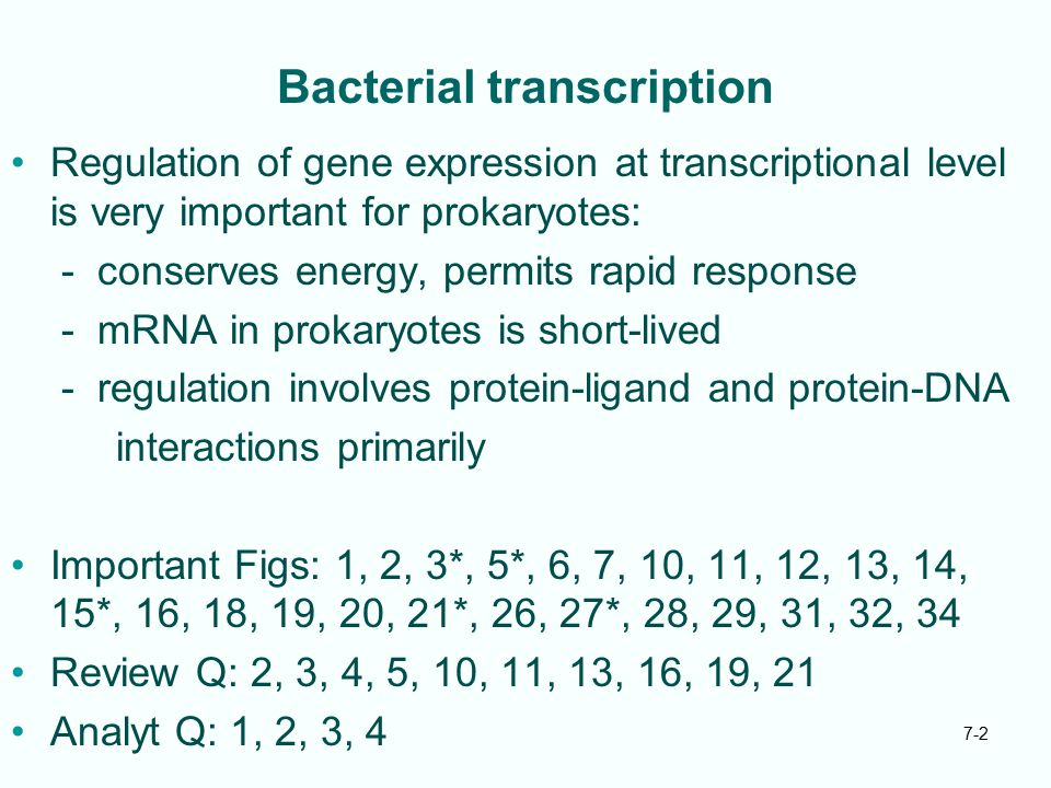 7-33 Negative Control of trp Operon Without tryptophan no trp repressor exists, just inactive aporepressor If aporepressor binds tryptophan, changes conformation to gain high affinity for trp operator Aporepressor plus tryptophan makes trp repressor Tryptophan is corepressor Fig.
