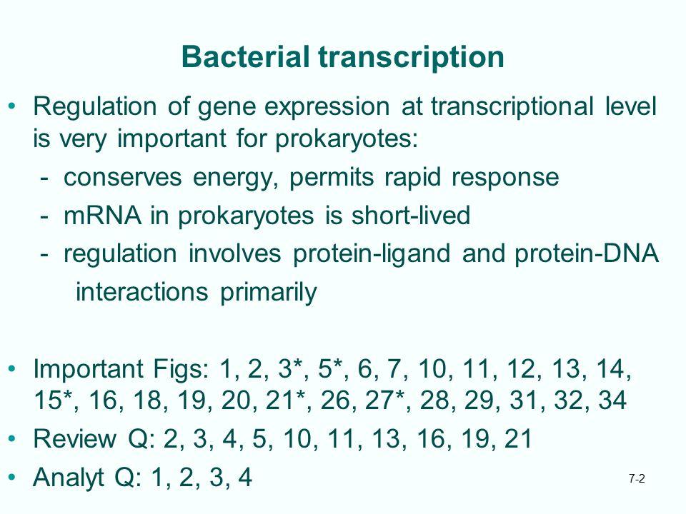 7-3 7.1 lac Operon of E.