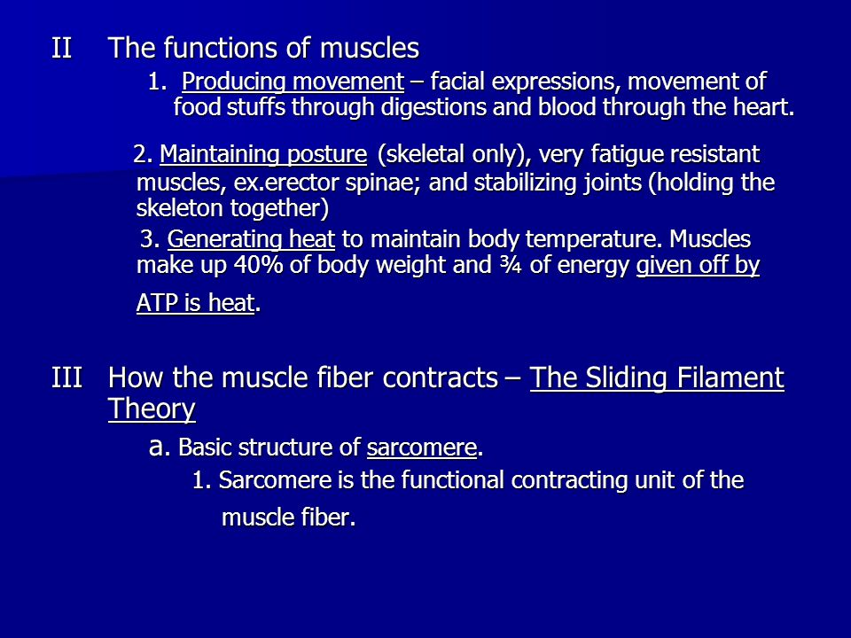 Muscles are made of muscle fibers (cells) Muscles are made of muscle fibers (cells) Muscle fibers (cells) are made of myofibrils which contain the functioning units of contraction called sarcomeres Muscle fibers (cells) are made of myofibrils which contain the functioning units of contraction called sarcomeres