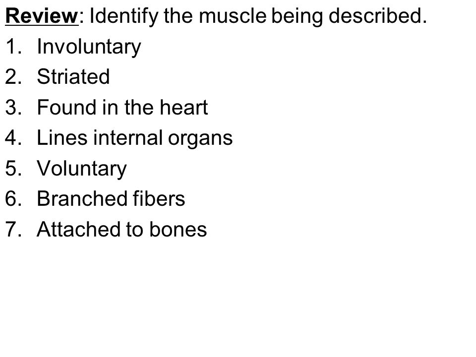 Review: Identify the muscle being described. 1.Involuntary 2.Striated 3.Found in the heart 4.Lines internal organs 5.Voluntary 6.Branched fibers 7.Att