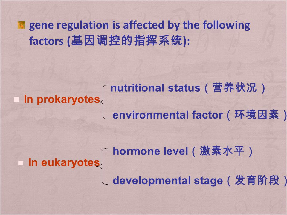 Gene regulation occurs mainly in two levels 1. transcriptional regulation 转录水平上的调控 2. post- transcriptional regulation 转录后水 平上的调控 processing of RNA tr