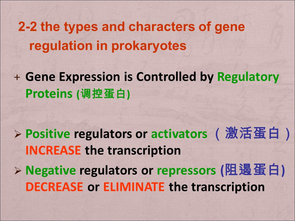 structural gene is a gene that codes for any RNA or protein product other than a regulatory element (i.e. regulatory protein).generegulatory protein r