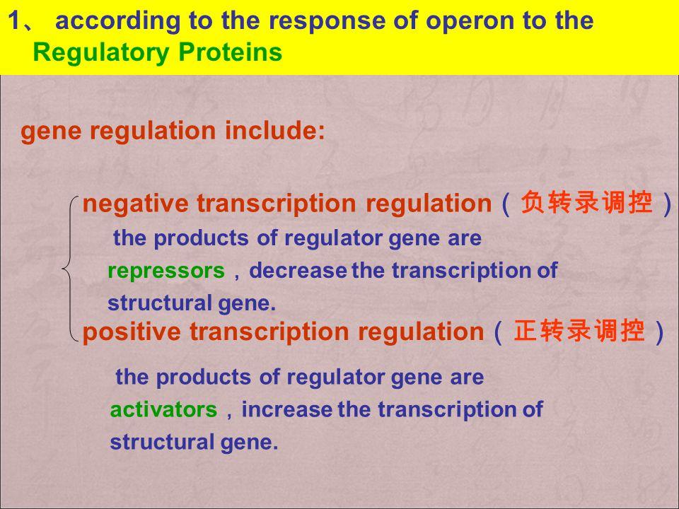 + Gene Expression is Controlled by Regulatory Proteins ( 调控蛋白 )  Positive regulators or activators (激活蛋白) INCREASE the transcription  Negative regul