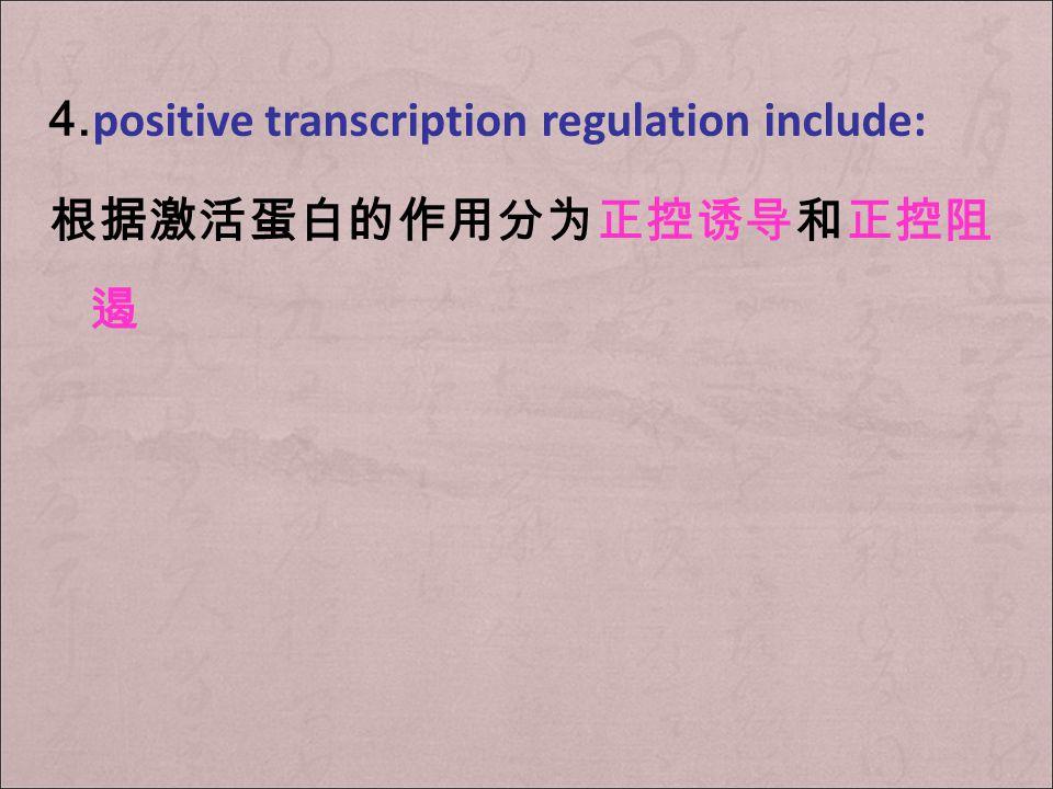 负控阻遏系统 In this system, when the corepressor binds to the repressor, the structural genes are not transcribed.