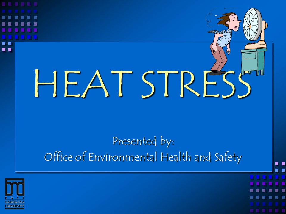 HEAT STRESS Presented by: Office of Environmental Health and Safety
