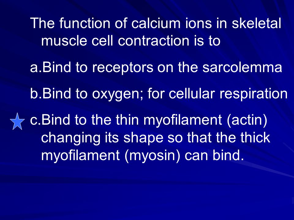 The function of calcium ions in skeletal muscle cell contraction is to a.Bind to receptors on the sarcolemma b.Bind to oxygen; for cellular respiratio