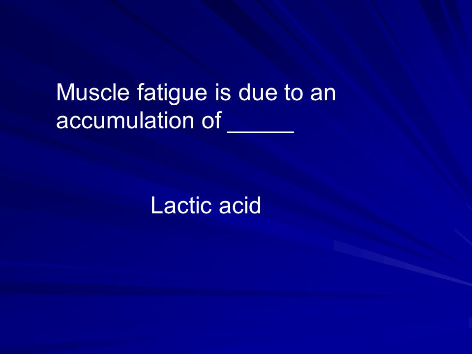 Muscle fatigue is due to an accumulation of _____ Lactic acid