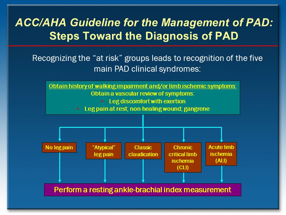"""ACC/AHA Guideline for the Management of PAD: Steps Toward the Diagnosis of PAD Perform a resting ankle-brachial index measurement Recognizing the """"at"""