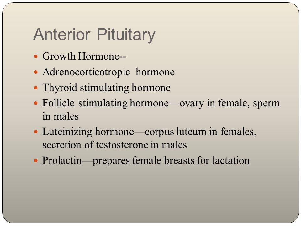 Posterior Pituitary Antidiuretic Hormone Oxytocin—contraction of uterus, milk ejection from breasts