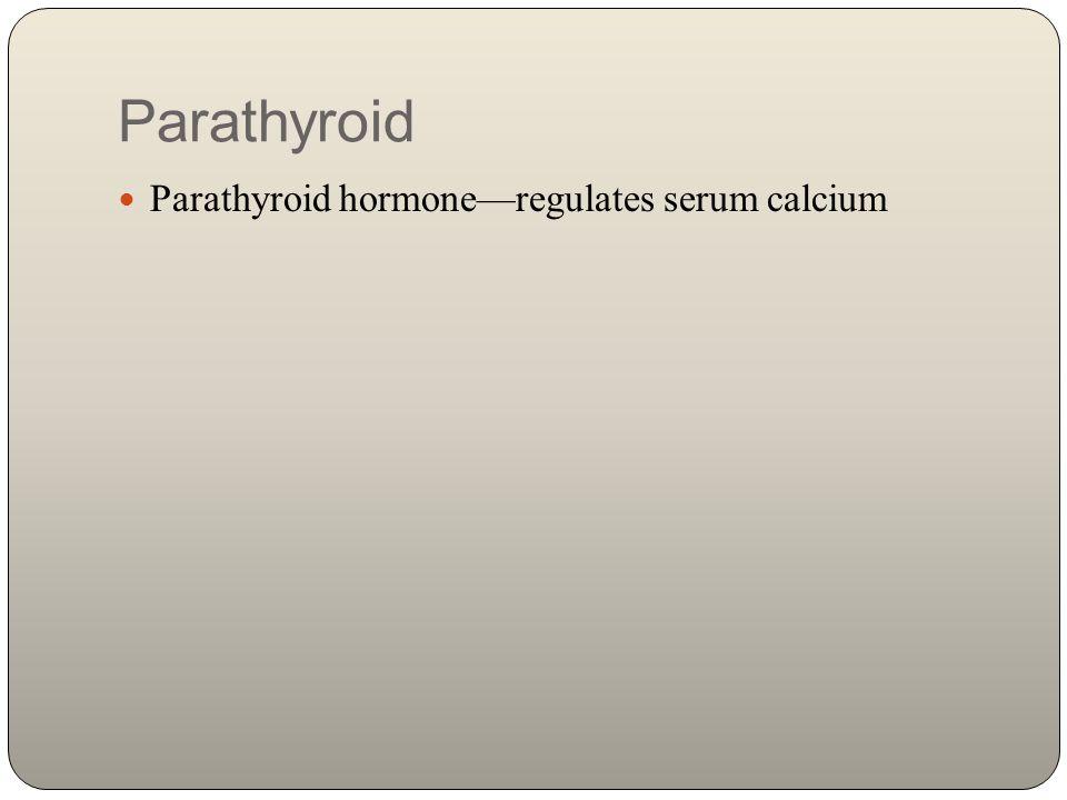 Parathyroid Parathyroid hormone—regulates serum calcium